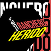 Ranchero a grito herido by Various Artists