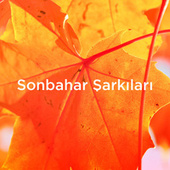 Sonbahar Sarkilari by Various Artists