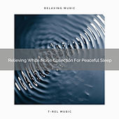 Relieving White Noise Collection For Peaceful Sleep de Ocean Waves For Sleep (1)