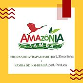 Chorando Atrapalhado + Samba de Boi-Bumbá von Amazônia Samba