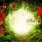 El Camino del Duende by Love Reprise