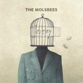Jeremy van The Moleskins