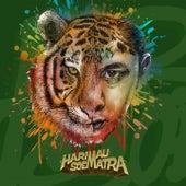 Harimau Soematra von Tuan Tigabelas