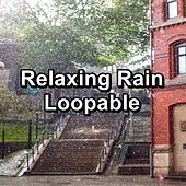 Relaxing Rain Loopable by Sounds Of Nature
