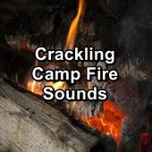 Crackling Camp Fire Sounds von Yoga Flow