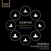 Lullabye (Goodnight, My Angel) (Live) von Cantus