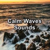 Calm Waves Sounds by Meditation Spa