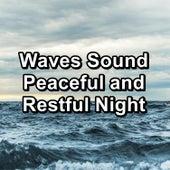Waves Sound Peaceful and Restful Night von Yoga