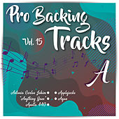 Pro Backing Tracks A, Vol.15 by Pop Music Workshop