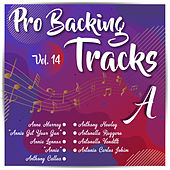 Pro Backing Tracks A, Vol.14 by Pop Music Workshop