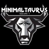 Minimal Taurus, Vol. 1 by Various Artists