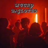Mucho Bailoteo de Various Artists