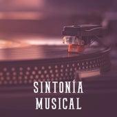 Sintonía Musical by Various Artists