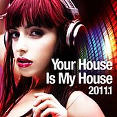 Your House Is My House 2011.1 (The Daft and Dirty Experience Collection) by Various Artists
