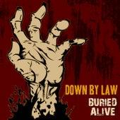 Buried Alive von Down By Law