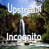 Upstream (A1) von Incognito