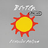Better (RAC Mix) de Penguin Prison