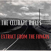 Extract from the Fungus fra Celibate Rifles