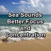 Sea Sounds Better Focus and Concentration von Delta Waves