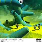 Love Me Now (feat. Cappa) von Raza