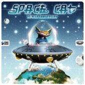 20 Year Anniversary de Space Cat