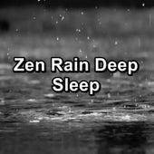 Zen Rain Deep Sleep by Nature Sounds (1)