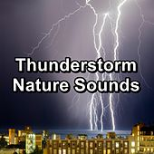 Thunderstorm Nature Sounds by Nature Sounds Nature Music (1)