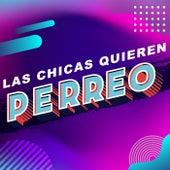 Las Chicas quieren Perreo de Various Artists