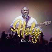 Holy by Dr Joe