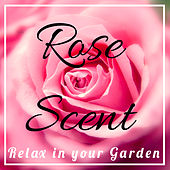Relax in your Garden : Rose Scent by Various Artists