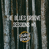 Blues Groove Sessions #1 by Shakin Woods