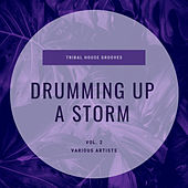 Drumming Up A Storm (Tribal House Grooves), Vol. 2 de Various Artists