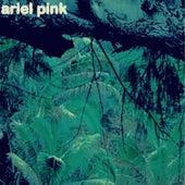 Burned Out Love de Ariel Pink's Haunted Graffiti