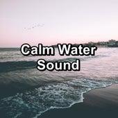 Calm Water Sound de Nature Sounds (1)