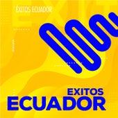 Éxitos Ecuador von Various Artists