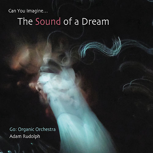 Can You Imagine...The Sound of Dream by Adam Rudolph