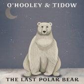 The Last Polar Bear von O'Hooley