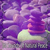 50 Sounds of Natural Peace von Lullabies for Deep Meditation