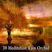 39 Meditation Rain Orchid by Rain Sounds Sleep