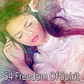 54 Freedom of Spirit de Deep Sleep Relaxation