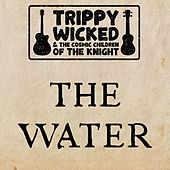 The Water (Acoustic) by Trippy Wicked