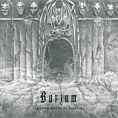 The Depths of Darkness by Burzum