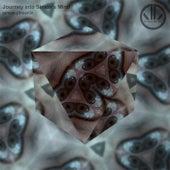 Journey into Simon's Mind by Simon Phoenix