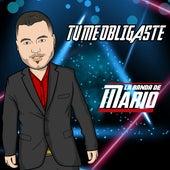 Tu Me Obligaste (Cover) von La Banda De Mario