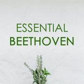 Essential Beethoven von Ludwig van Beethoven