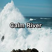 Calm River de Relaxing Music Therapy