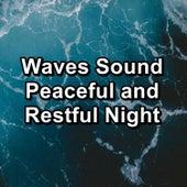 Waves Sound Peaceful and Restful Night von Yoga Shala