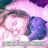 25 Rain Spa Sounds for Meditation de Relaxing Rain Sounds