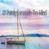 69 Purely Serene in the Mind de Musica Relajante