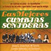 Las Mejores Cumbias Sonideras by Various Artists